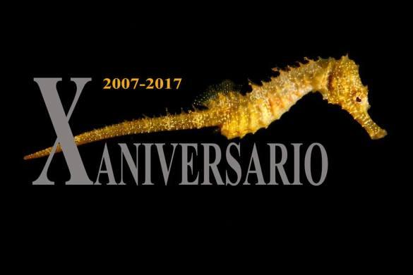 Imagen anunciadora del aniversario de la asociación Hippocampus