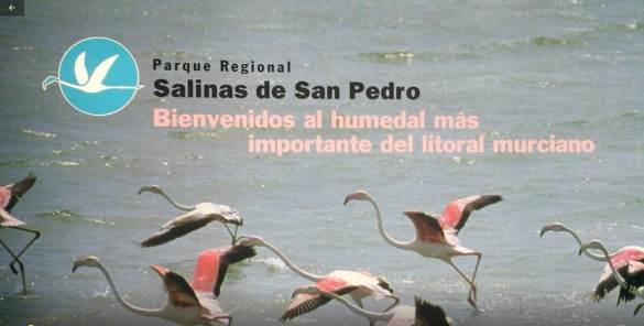Centro de visitantes Las Salina marecologia.com