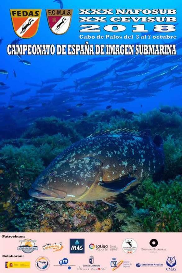 Cartel anunciador campeonato de España de imagen submarina